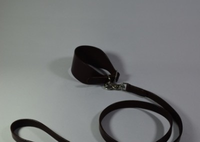 Hound Collar & Leash
